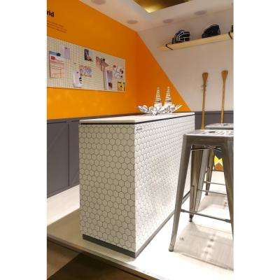 Hexa Mono White 10 in. W x 10 in. H Peel and Stick Decorative Mosaic Wall Tile (5-Tiles)
