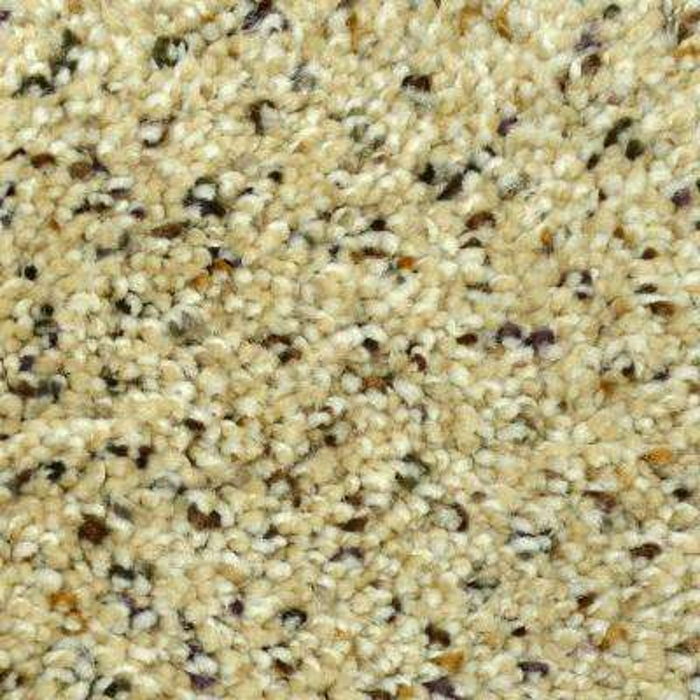 Carpet Sample - Gratitude I - Color Dawson Texture 8 in. x 8 in.