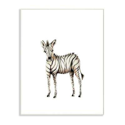 "10 in. x 15 in. ""Baby Zebra Illustration"" by Studio Q Printed Wood Wall Art"