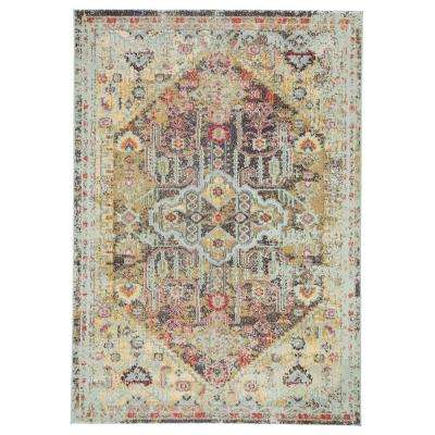 Amuze Multicolor 7 ft. 10 in. x 9 ft. 10 in. Medallion Rectangle Rug