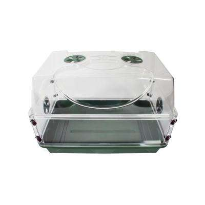 Seed and Herb Domed Propagator and Tray with Vented Side Extension