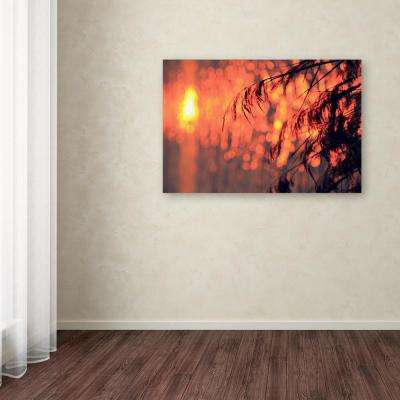 "16 in. x 24 in. ""Sunset Wishes"" by Beata Czyzowska Young Printed Canvas Wall Art"