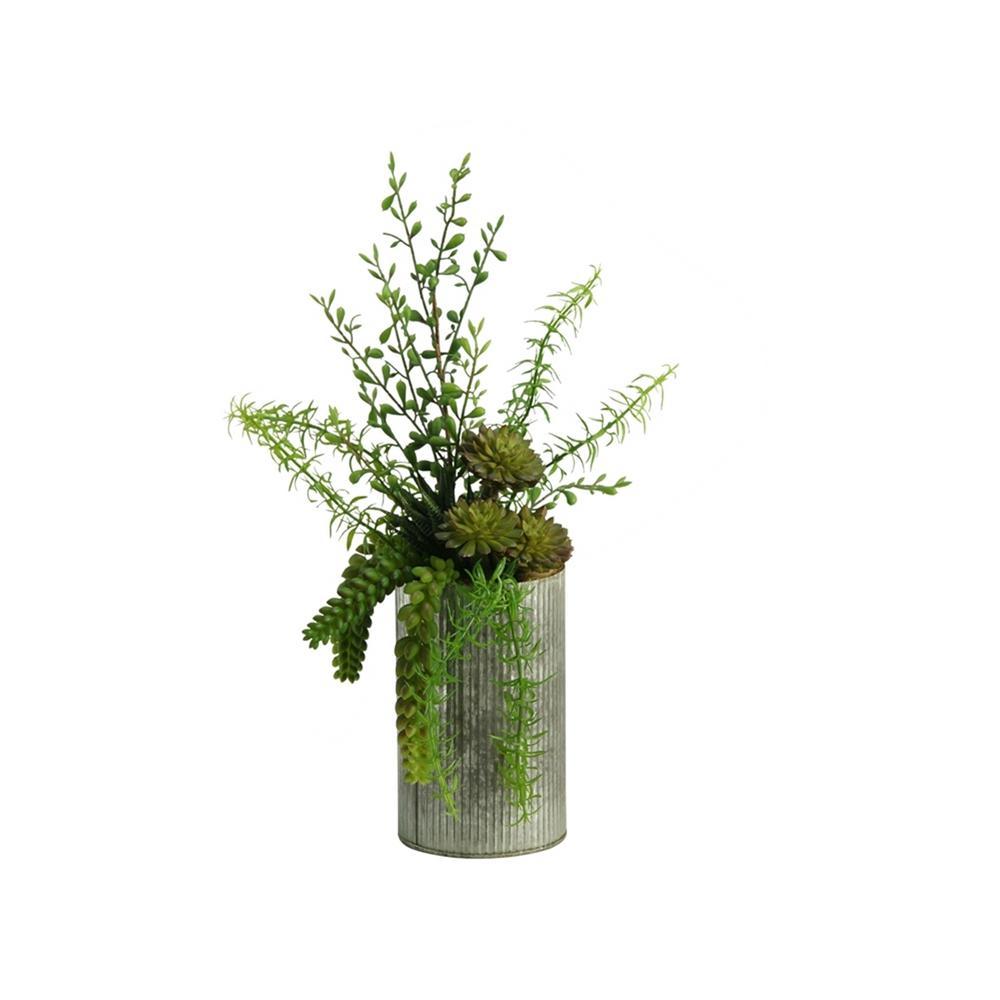 Indoor Aloe, Burro Tail, and Succulents in Metal Vase