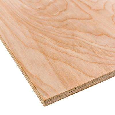 Birch Plywood (Common: 3/4 in  x 2 ft  x 4 ft