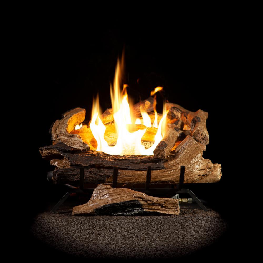 Emberglow American Elm 24 In Vent Free Propane Gas Fireplace Logs