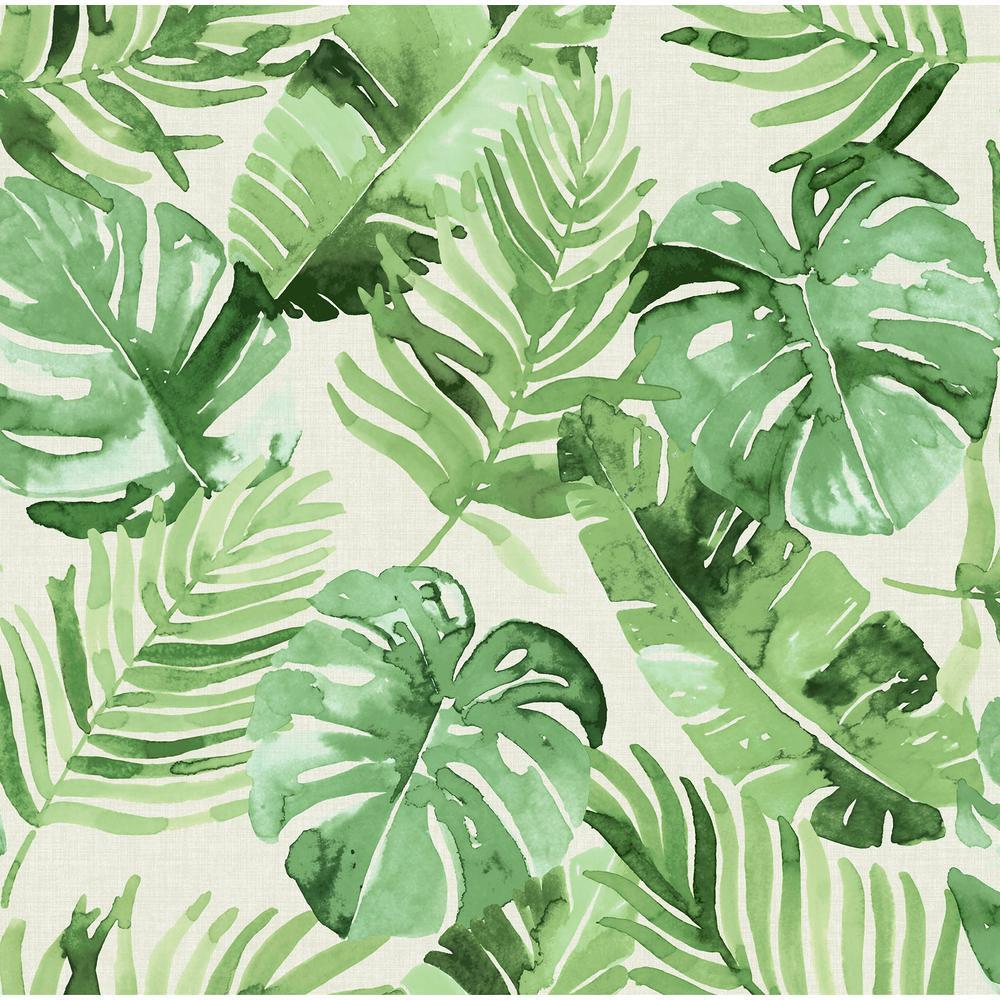 Tortola Green Vinyl Strippable Roll (Covers 30.75 sq. ft.)