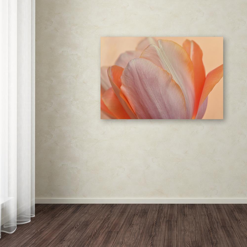 Trademark Fine Art 12 in. x 19 in. ''Orange Glowing Tulip''