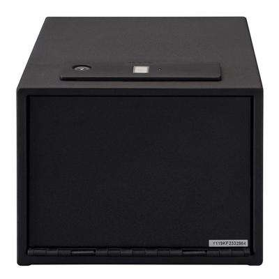 0.58 cu. ft. Steel Quick Access Electric Safe with Biometric Lock