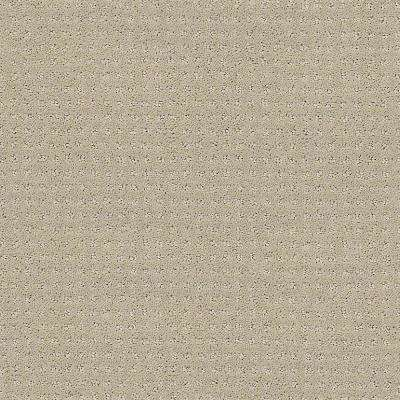 Carpet Sample - Sand Piper - Color Cloudy Day 8 in. x 8 in.