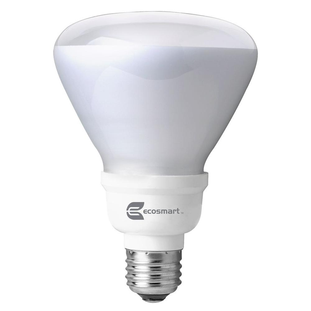 65-Watt Equivalent R30 CFL Flood Light Bulb, Daylight