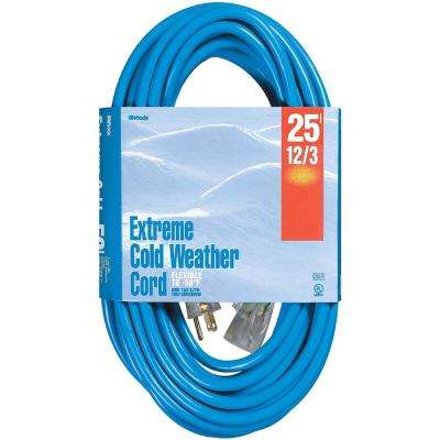 25 ft. 12/3 SJTW Extreme Low-Temp Outdoor Heavy-Duty Extension Cord with Power Light Plug