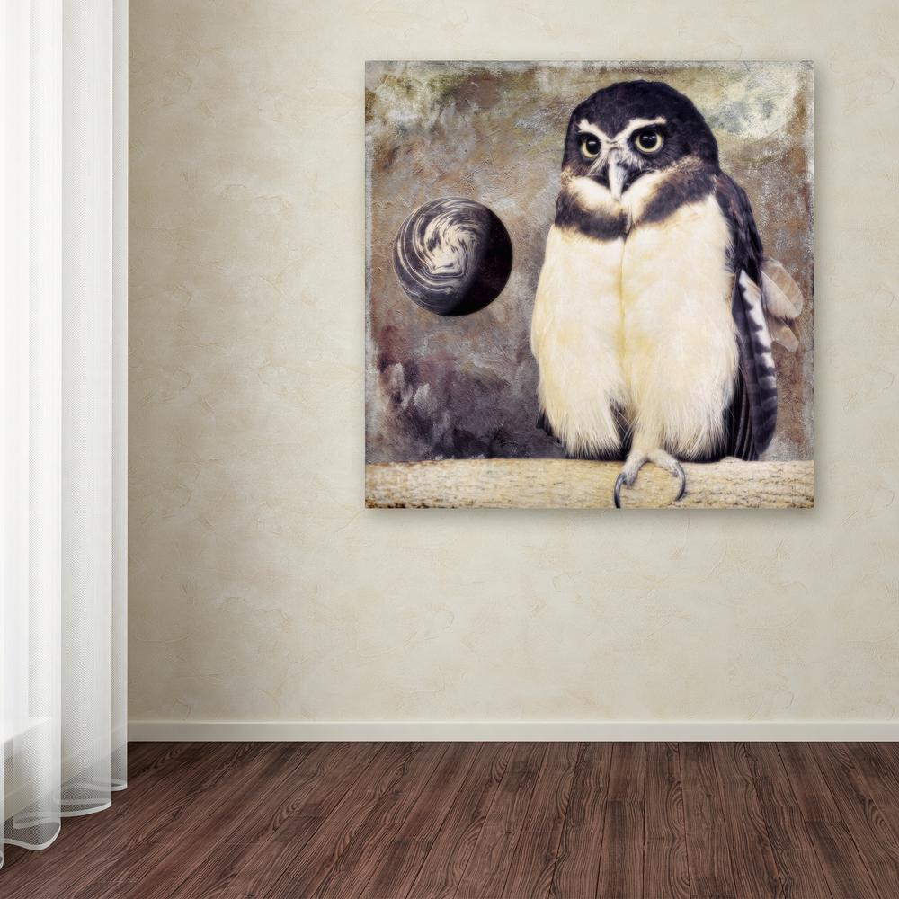 "35 in. x 35 in. ""Moon Owl"" by Color Bakery Printed"
