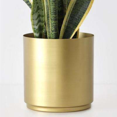 10 in. Brass Finished Metal Planter (10 in., 8 in. or 6 in. and 5 in. Set)