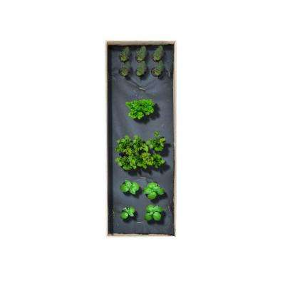 12 in. x 36 in. Herbs Garden Kit with Basil, Cilantro, Parsley and Dill Culinary Herb Kit
