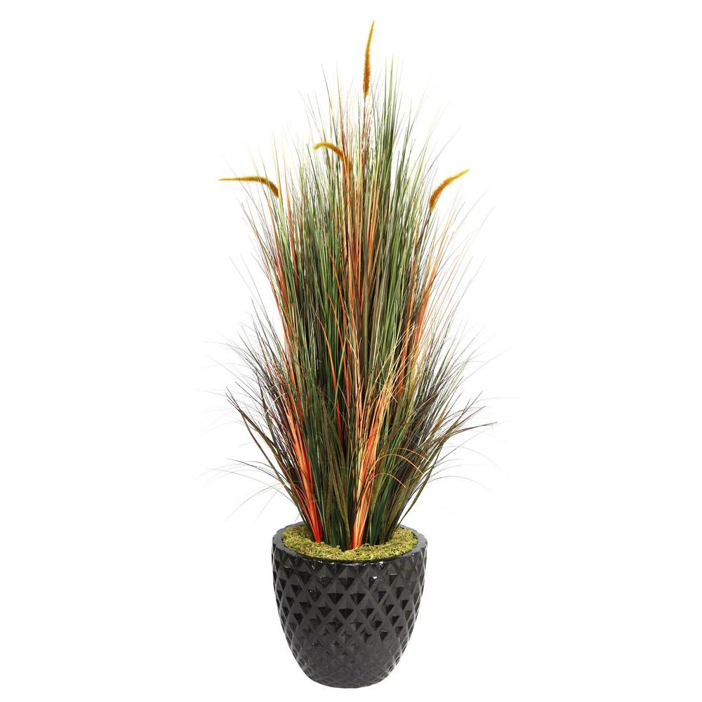 66 in. Tall Onion Grass with Cattails in 16 in. Fiberstone