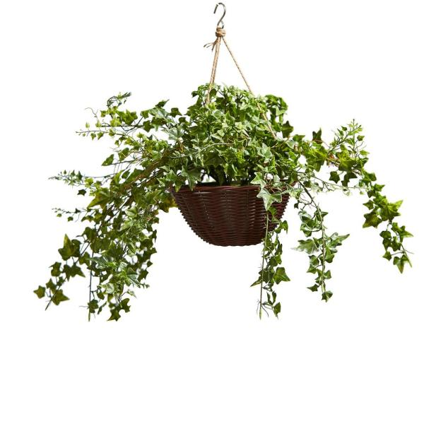 Faux English Ivy Arrangement with Hanging Basket