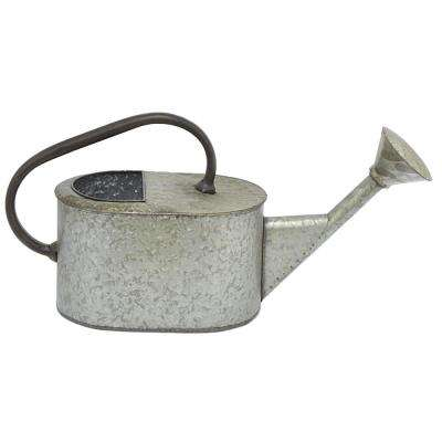 Galvanized Metal Water Can