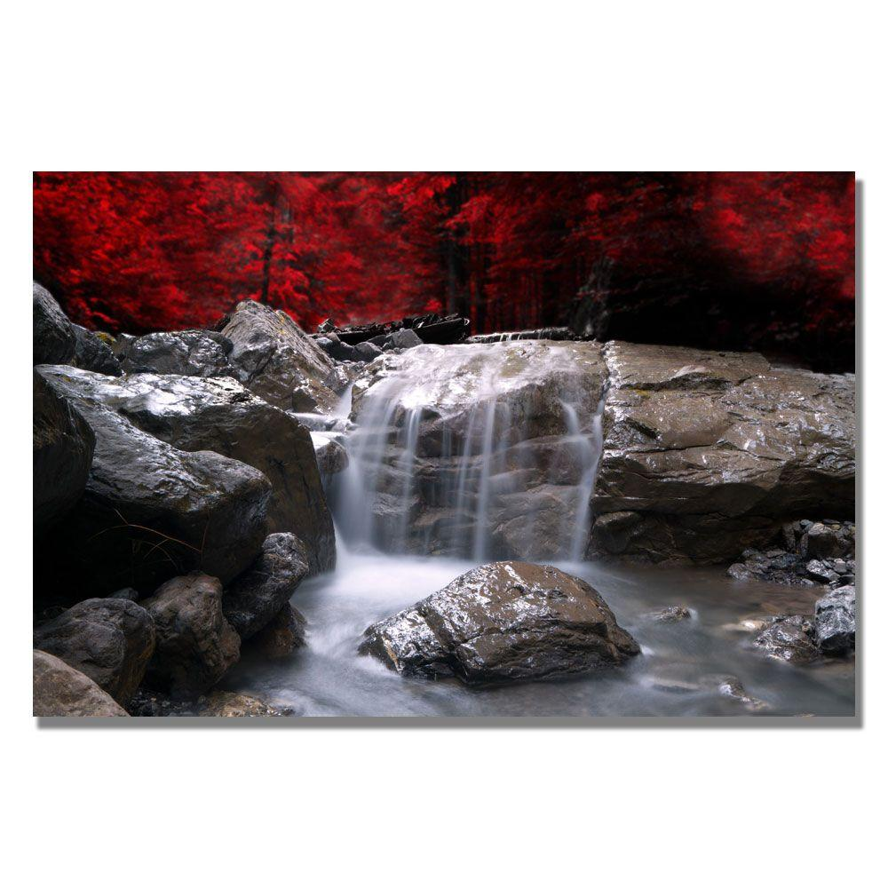35 in. x 47 in. Red Vison Canvas Art