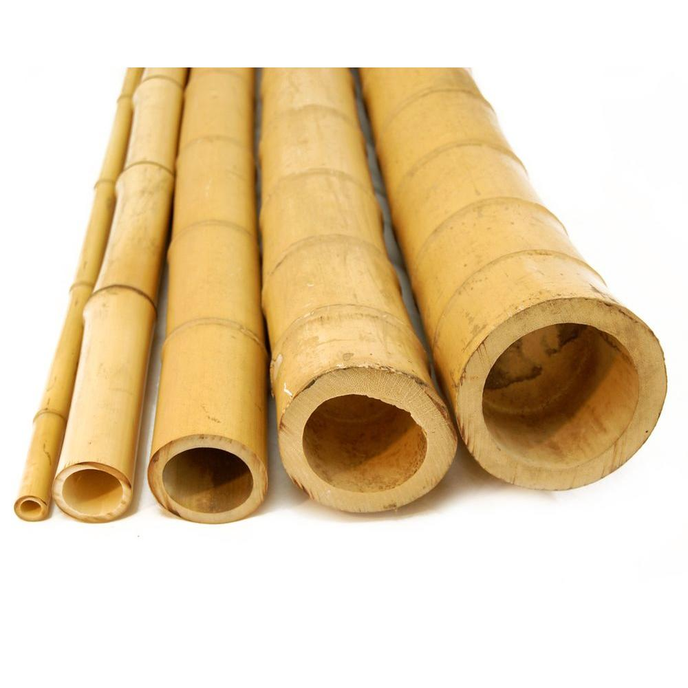Backyard X-Scapes 5 in. D x 8 ft. H Natural Bamboo Poles (2-Piece/Bundle)-DISCONTINUED