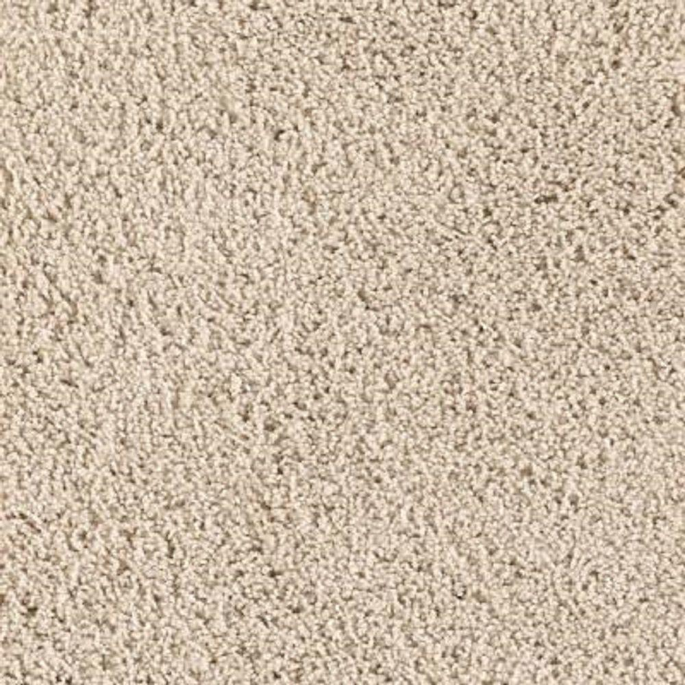 Carpet Sample - Ashcraft II - Color Cashmere Texture 8 in.