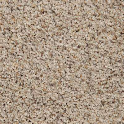 Carpet Sample - Riley II - Color Mosaic Textured 8 in. x 8 in.