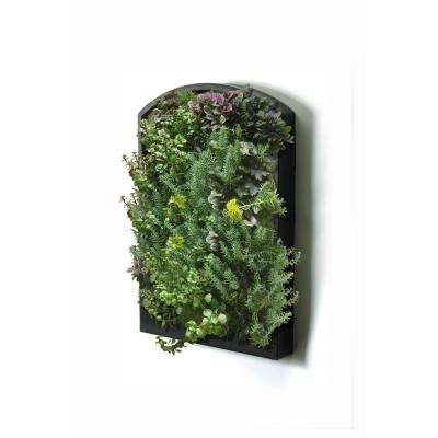 Green Wall Living Wall Black