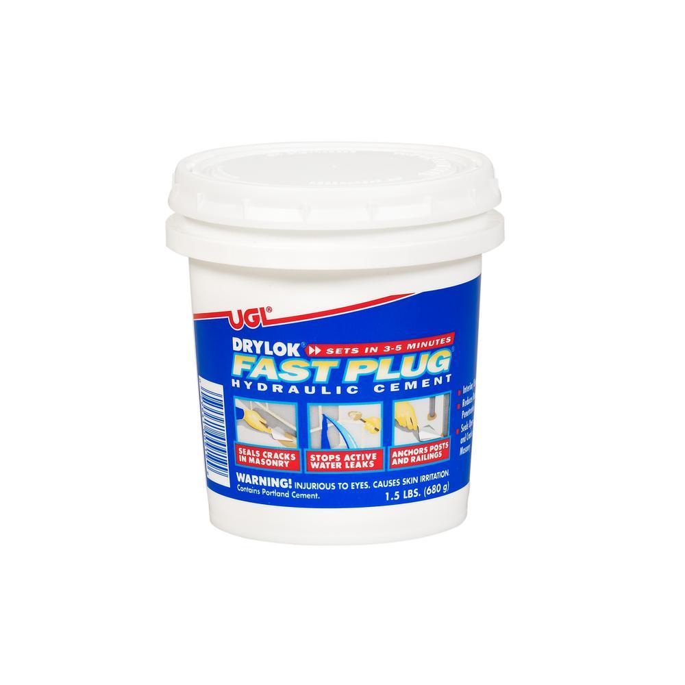 DRYLOK 1.5 lb. Fast Plug (2-Pack)