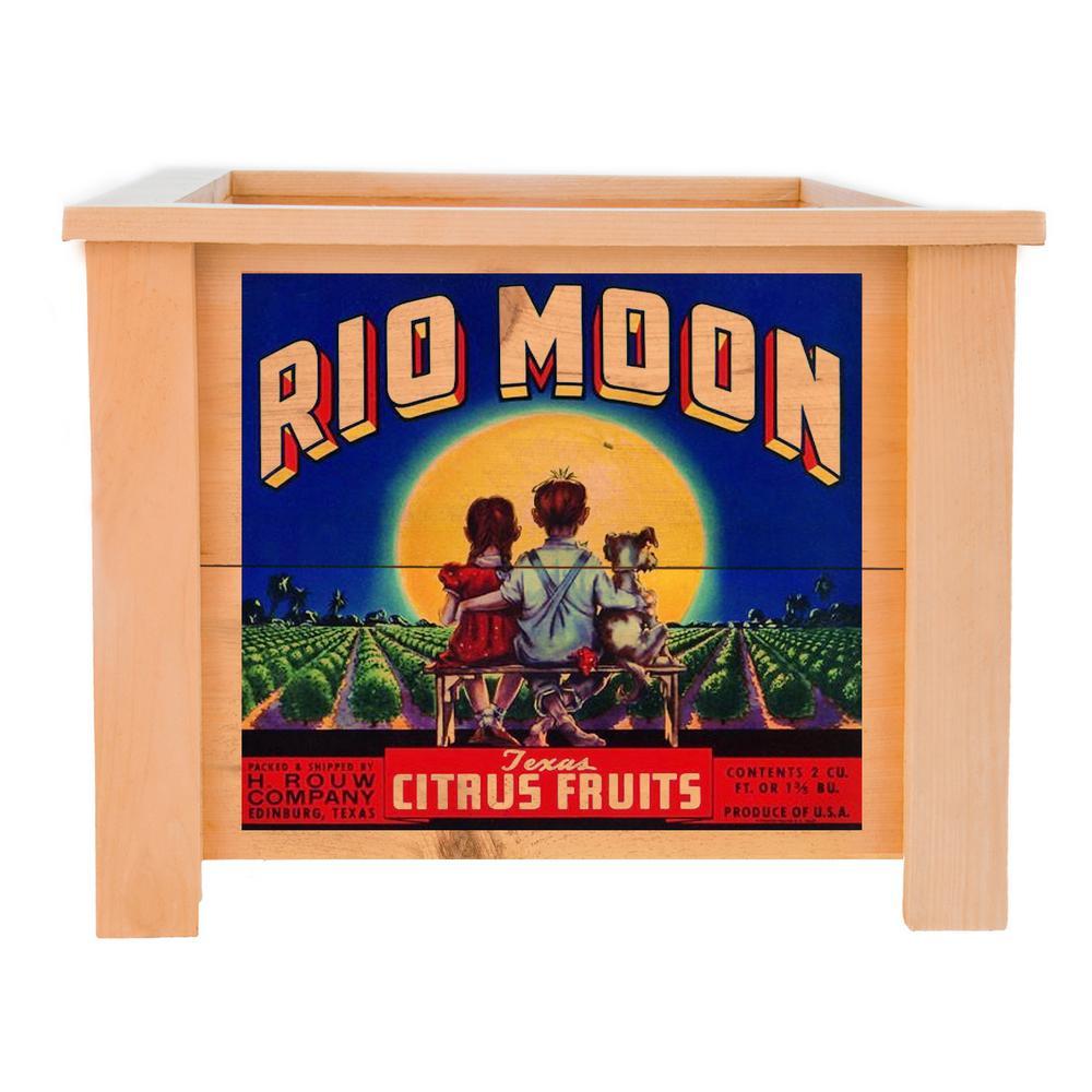 19 in. x 19 in. Square Cedar Planter Box with Rio Moon Art