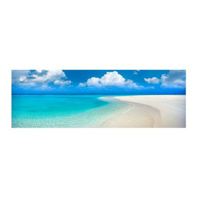 Paradise Point by Colossal Images Canvas Wall Art 18 in. x 58 in.