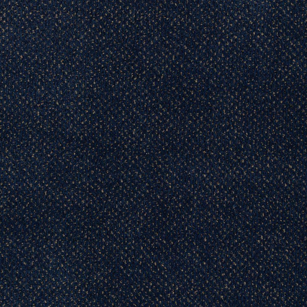 Market Share - Color Dark Secret 12 ft. Carpet