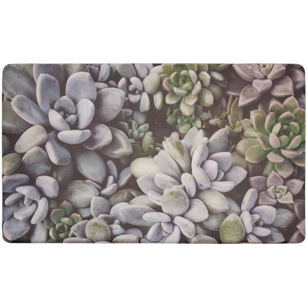 Chef Gear Blossom Succulents 30 In X 18 In Gelness