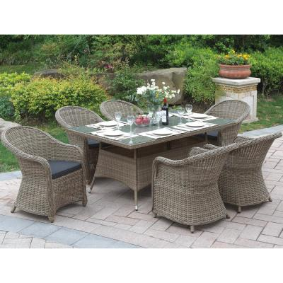 Nemi 7-Piece All-Weather Wicker Rectangular Outdoor Dining Set with Brown Cushion