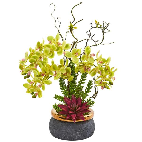 Nearly Natural Phalaenopsis Orchid and Succulent Artificial Arrangement 1932-GR