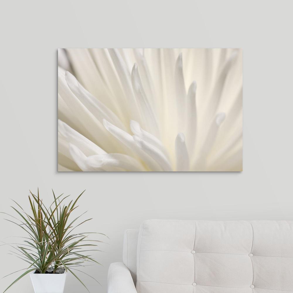 GreatBigCanvas ''White Flower'' by PhotoINC Studio Canvas Wall Art 2529387_24_30x20