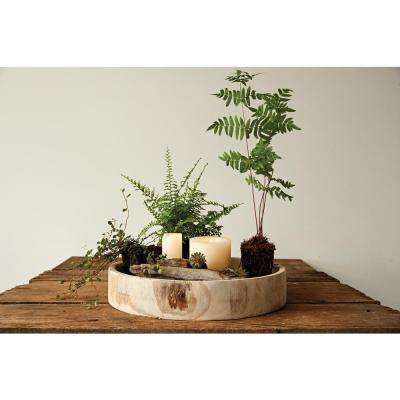 Paulownia Wood Carved Decorative  Tray