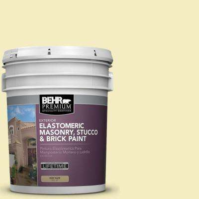 5 gal. #MS-34 Vanilla Elastomeric Masonry, Stucco and Brick Exterior Paint