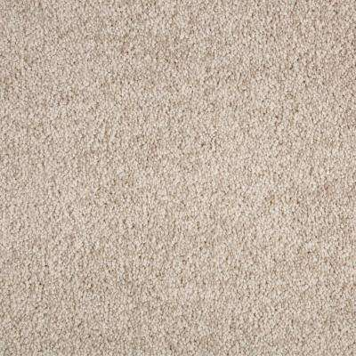 Carpet Sample - Gemini I Color - Aberdeen Texture 8 in. x 8 in.
