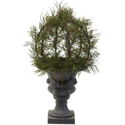 30 in. Indoor/Outdoor Pond Cypress Topiary with Urn