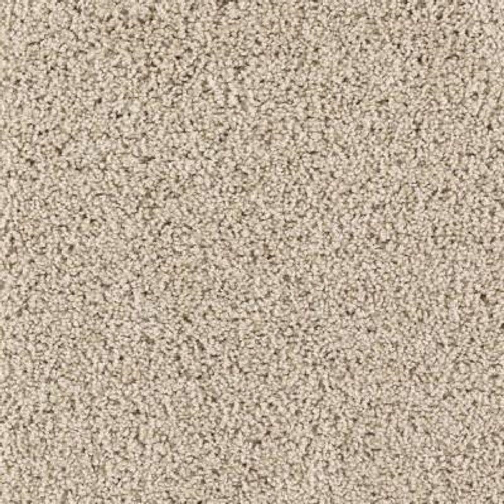 Lifeproof Carpet Sample Ashcraft Ii Color Palisade
