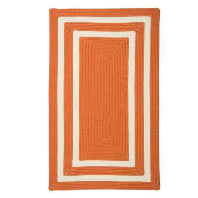 Griffin Border Orange/White 10 ft. x 13 ft. Braided Indoor/Outdoor Area Rug