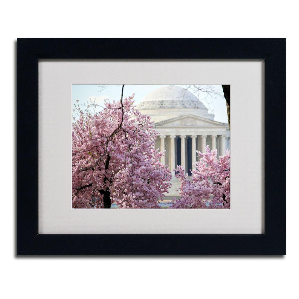 null 11 in. x 14 in. DC 4 Matted Framed Art