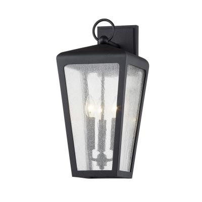 Mariden Textured Black 3-Light Wall Sconce with Clear Seeded Glass Shade