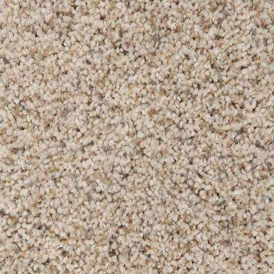 Carpet Sample - Riley I - Color Viking Textured 8 in. x 8 in.