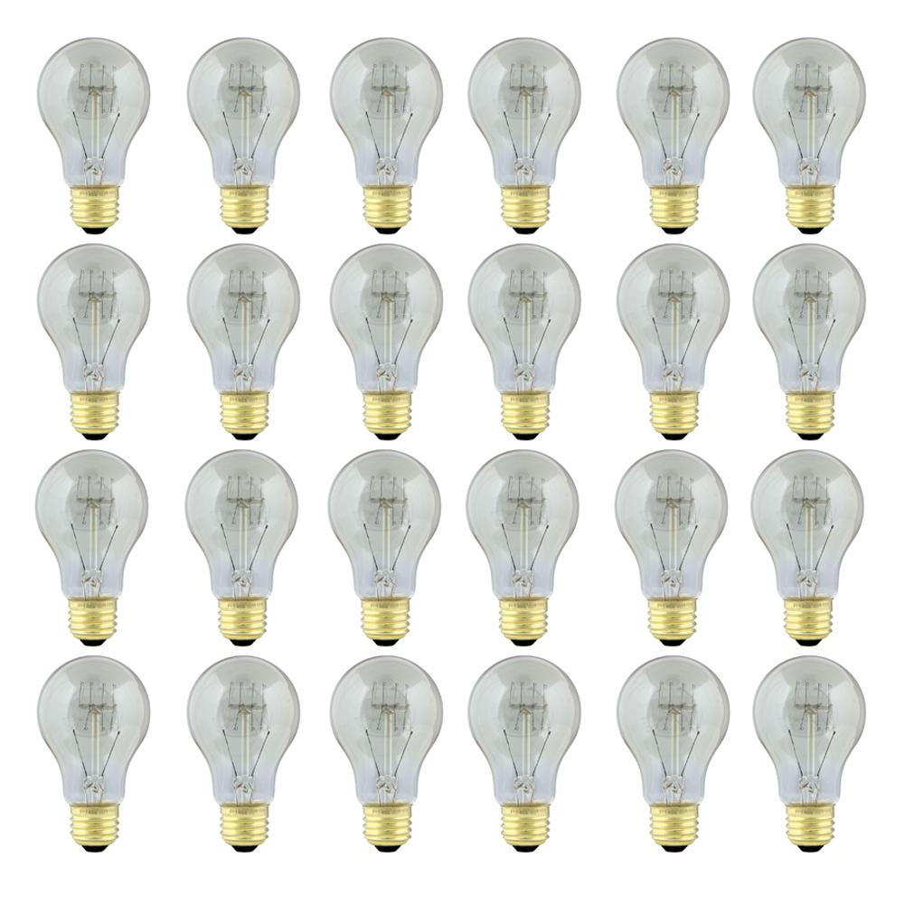 60-Watt Soft White (2200K) AT19 Dimmable Incandescent Original Vintage Style