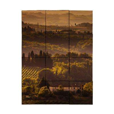 Vineyard1 24 in. x 18 in. Tumbled Marble Tiles (3 sq. ft. /case)