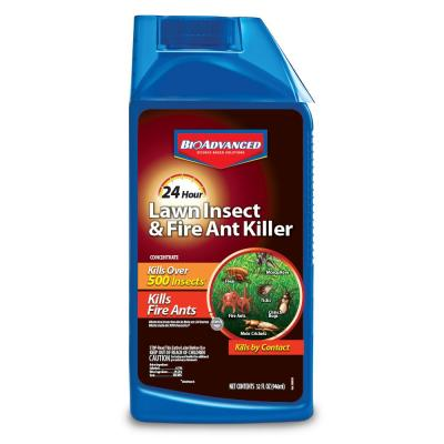 Concentrate 32 oz. 24-Hour Lawn Insect And Fire Ant Killer