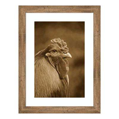"""Domestic Chicken, Partridge Brahma, cockerel, close-up of head"" by Gerard Lacz Framed Wall Art"