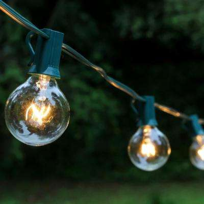 Light Globe String Lights in Clear (25-Pack)