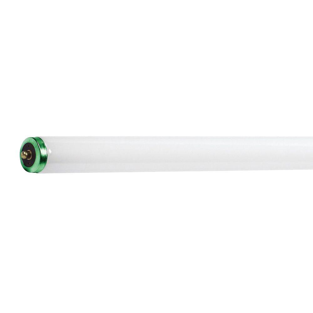 Philips 8 ft. T12 75-Watt Cool White (4100K) TuffGuard Alto Supreme Linear Fluorescent Light Bulb (15-Pack)