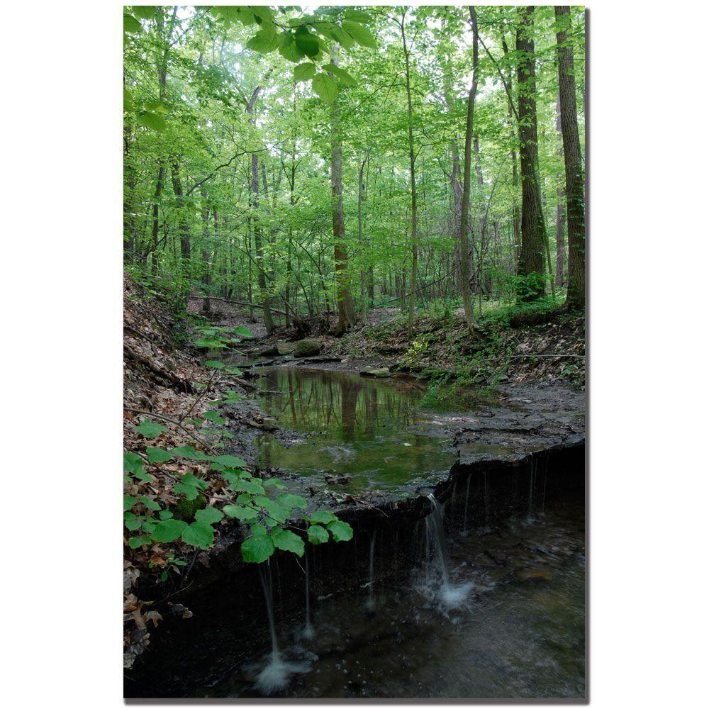 Trademark Fine Art 24 in. x 16 in. Tiny Forest Falls Canvas Art